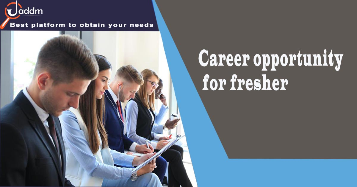 Career Opportunity for Fresher